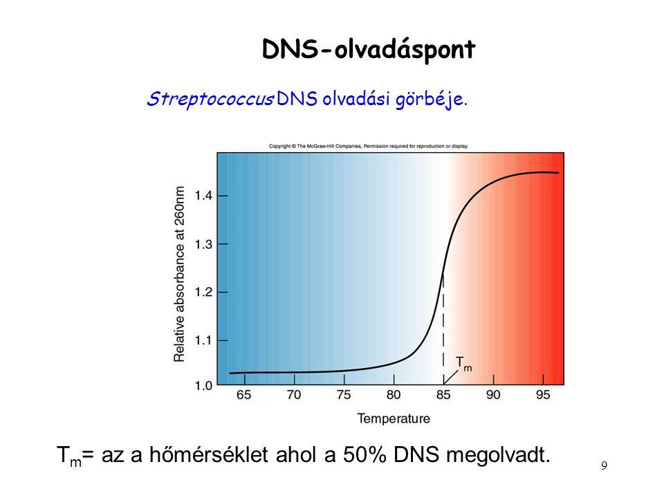 9 DNS-olvadáspont Streptococcus DNS olvadási görbéje. T m = az a hőmérséklet ahol a 50% DNS megolvadt.