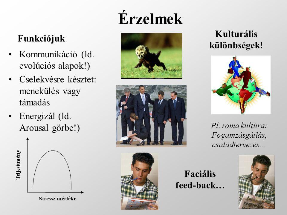 Érzelmek Funkciójuk Kommunikáció (ld. evolúciós alapok!) Cselekvésre késztet: menekülés vagy támadás Energizál (ld. Arousal görbe!) Stressz mértékeTel