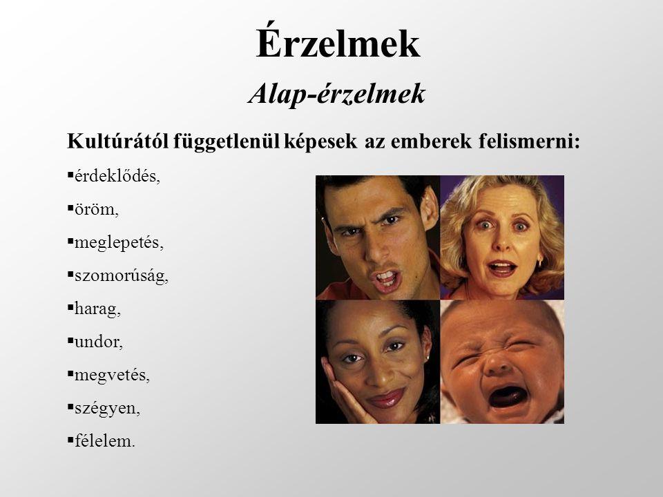 Érzelmek Alap-érzelmek Kultúrától függetlenül képesek az emberek felismerni:  érdeklődés,  öröm,  meglepetés,  szomorúság,  harag,  undor,  meg