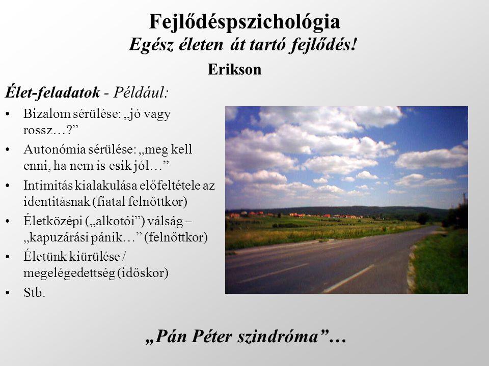 """Fejlődéspszichológia Egész életen át tartó fejlődés! Erikson Élet-feladatok - Például: Bizalom sérülése: """"jó vagy rossz…?"""" Autonómia sérülése: """"meg ke"""