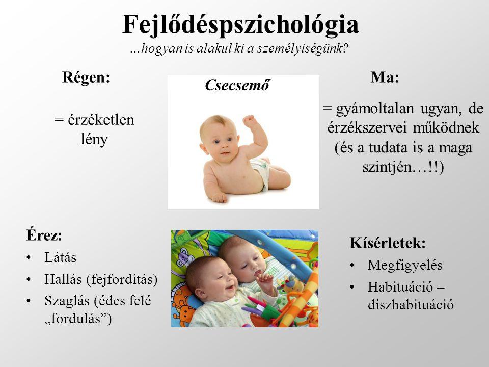 Fejlődéspszichológia …hogyan is alakul ki a személyiségünk? Régen:Ma: Csecsemő = érzéketlen lény = gyámoltalan ugyan, de érzékszervei működnek (és a t