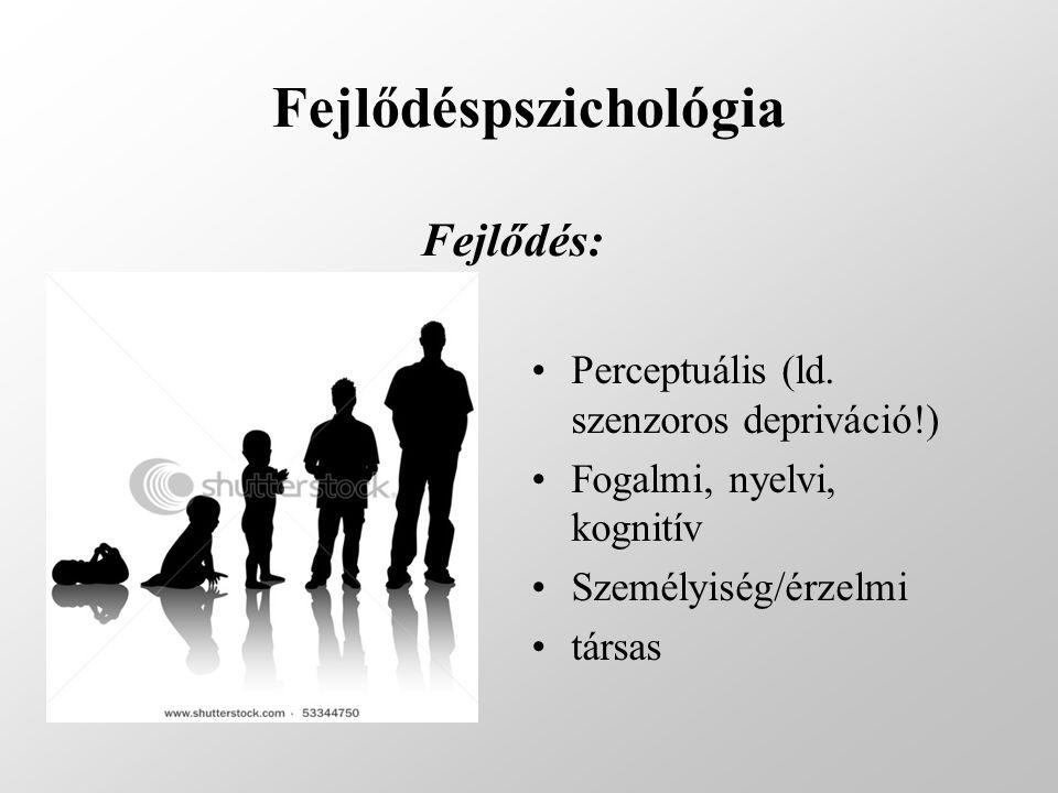 Fejlődéspszichológia Fejlődés: Perceptuális (ld. szenzoros depriváció!) Fogalmi, nyelvi, kognitív Személyiség/érzelmi társas