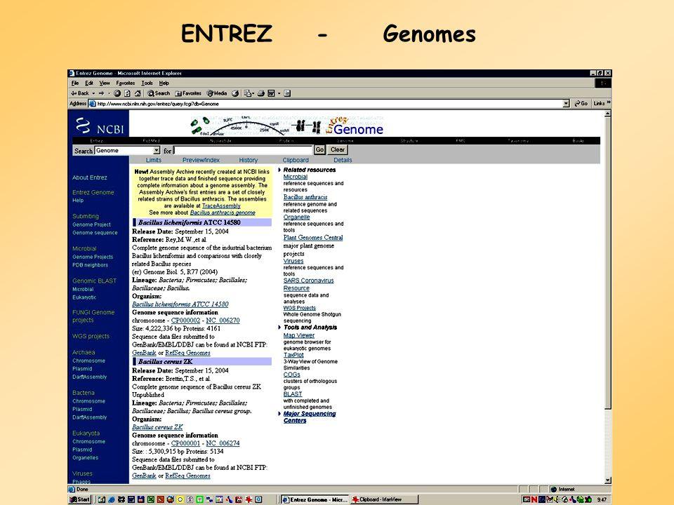 Az örökké bővülő Entrez - ma Entrez PopSet Structure PubMed Books 3D Domains Taxonomy GEO/GDS UniGene Nucleotide Protein Genome OMIM CDD/CDART Journal