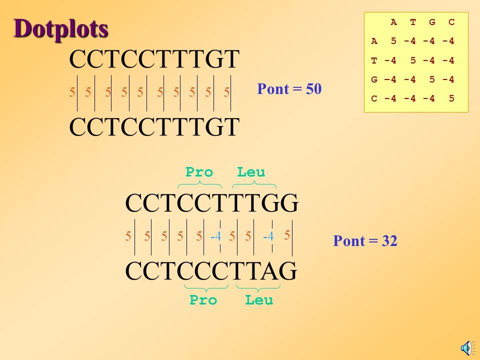 A T G C A 5 -4 -4 -4 T -4 5 -4 -4 G –4 -4 5 -4 C -4 -4 -4 5 Illeszkedési Mátrix Dotplots