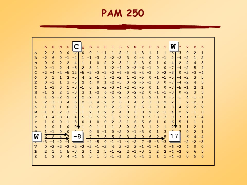 PAM (Percent Accepted Mutations) mátrixok Fehérje családokból globál illesztéséből származik A család tagjai legalább 85%-osan azonosak ( Dayhoff et al., 1978 ) Filogenetikus fa konstrukciója és ősi eredő szekvencia minden fehérje családra aminosav cserék számítógépes analízise