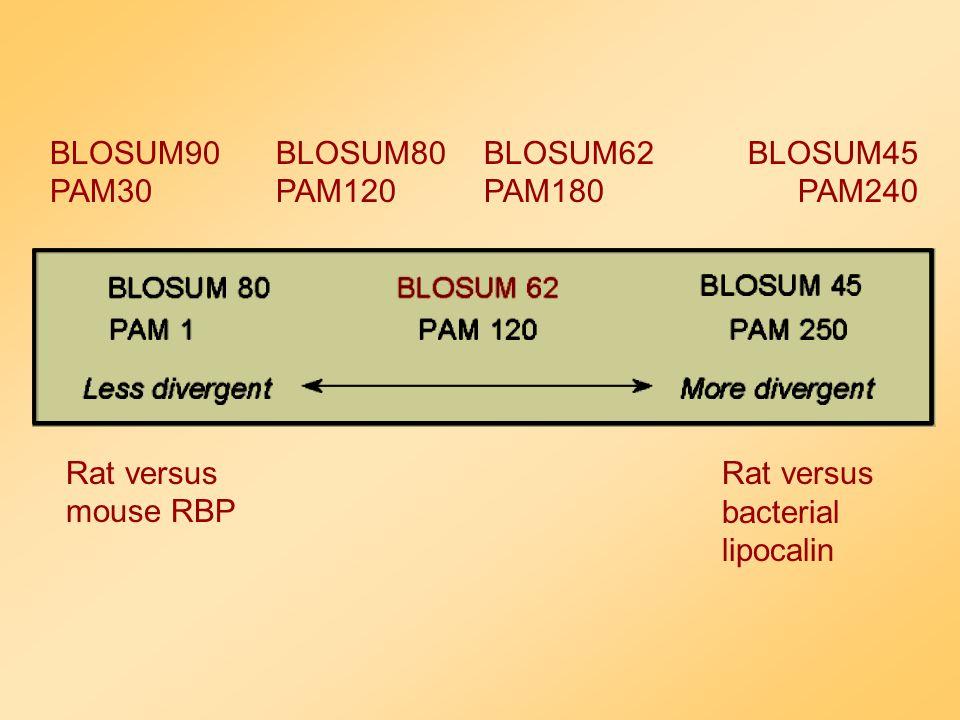 Melyik mátrixot használjuk ? Általában lokális hasonlósg keresés során a BLOSUM mátrixok jobban használhatóak, mint PAM mátrixok ( Henikoff & Henikoff