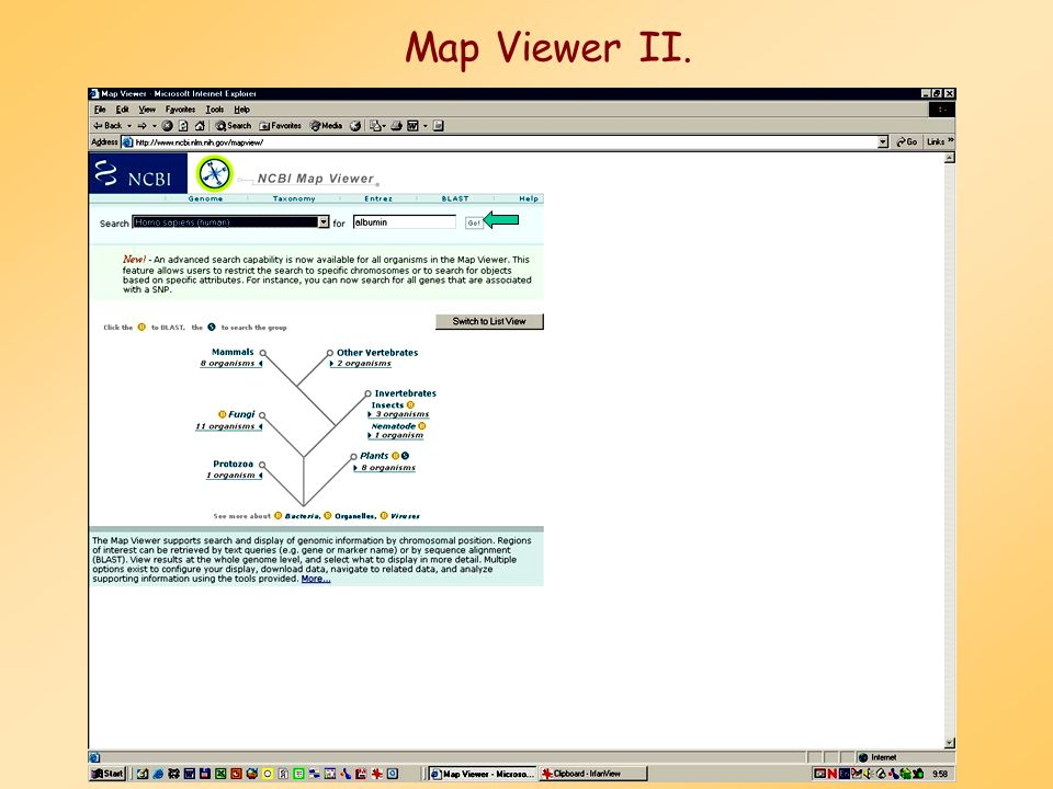 Map Viewer II.