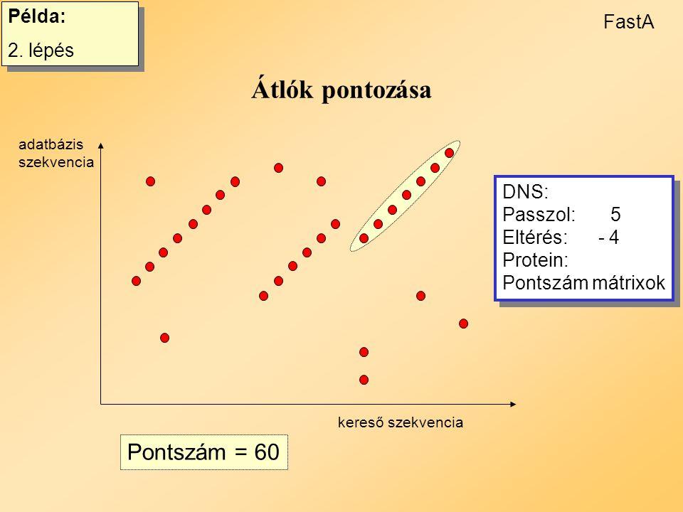 FastA (Pearson and Lipman) 1. Rövid, rögzített hosszúságú azonos betűsor keresése 2.