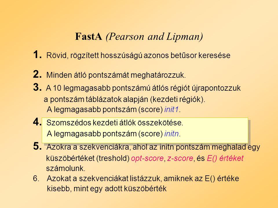 FastA Példa: 3. lépés Példa: 3. lépés Pontszám > 60 (INIT1) Az átlók pontozása DNS: Passzol:5 Eltérés: - 4 Protein: Pontszám mátrixok DNS: Passzol:5 E