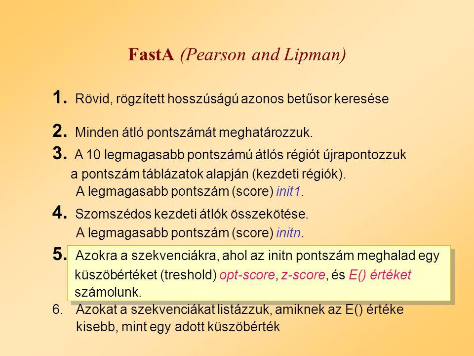 A szomszédok átlós szakaszok összekötése FastA Példa: 4.