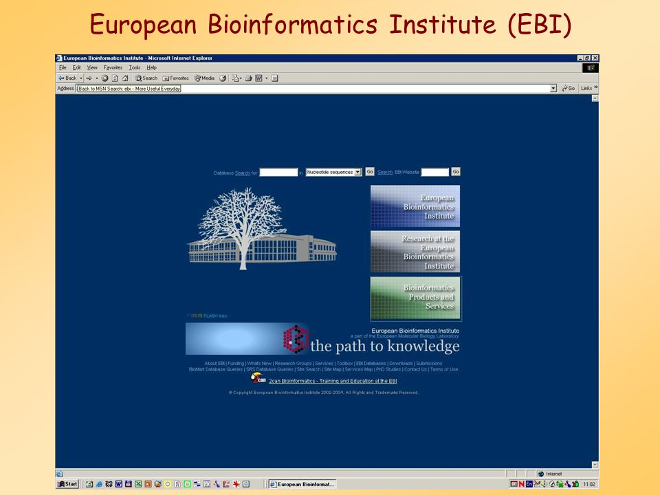 European Bioinformatics Institute (EBI)