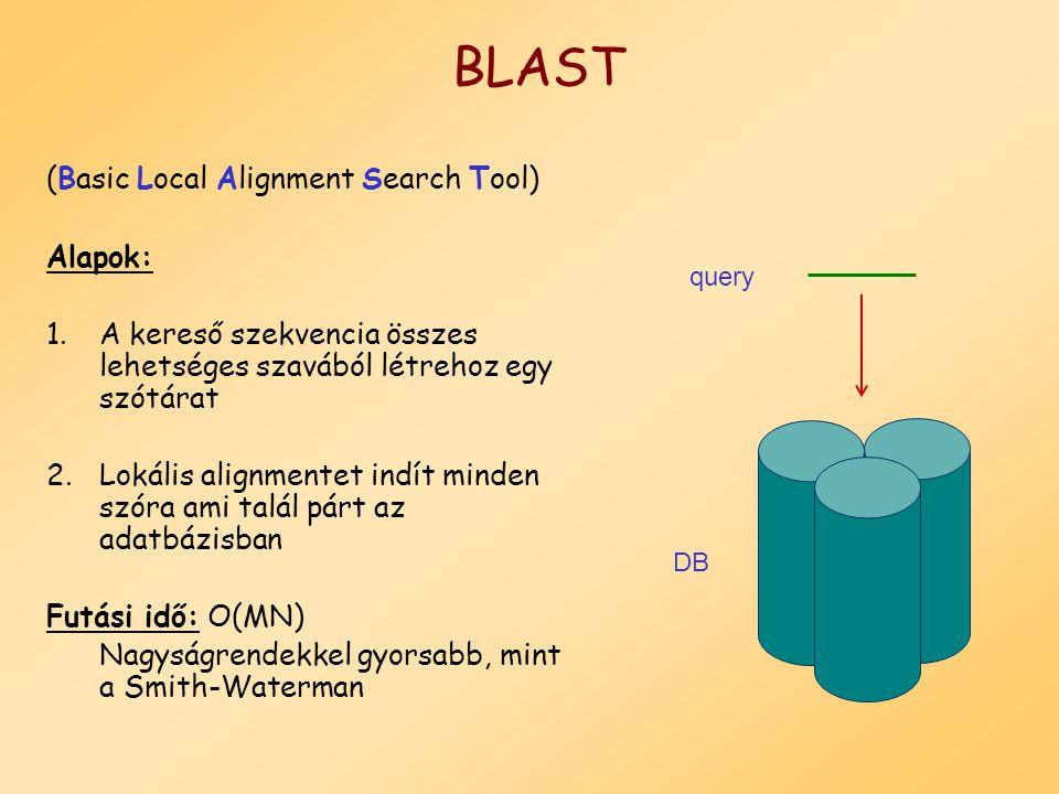 FASTA programok: hasonlóság keresés kereső szekvencia és bármilyen típusú szekvencia között(DNS és Protein).