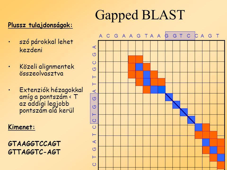 Gapped BLAST A C G A A G T A A G G T C C A G T C T G A T C C T G G A T T G C G A Plussz tulajdonságok: szó párokkal lehet kezdeni Extenziók lyukakkal a váz körüli sávon belül Kimenet: GTAAGGTCCAGT GTTAGGTC-AGT
