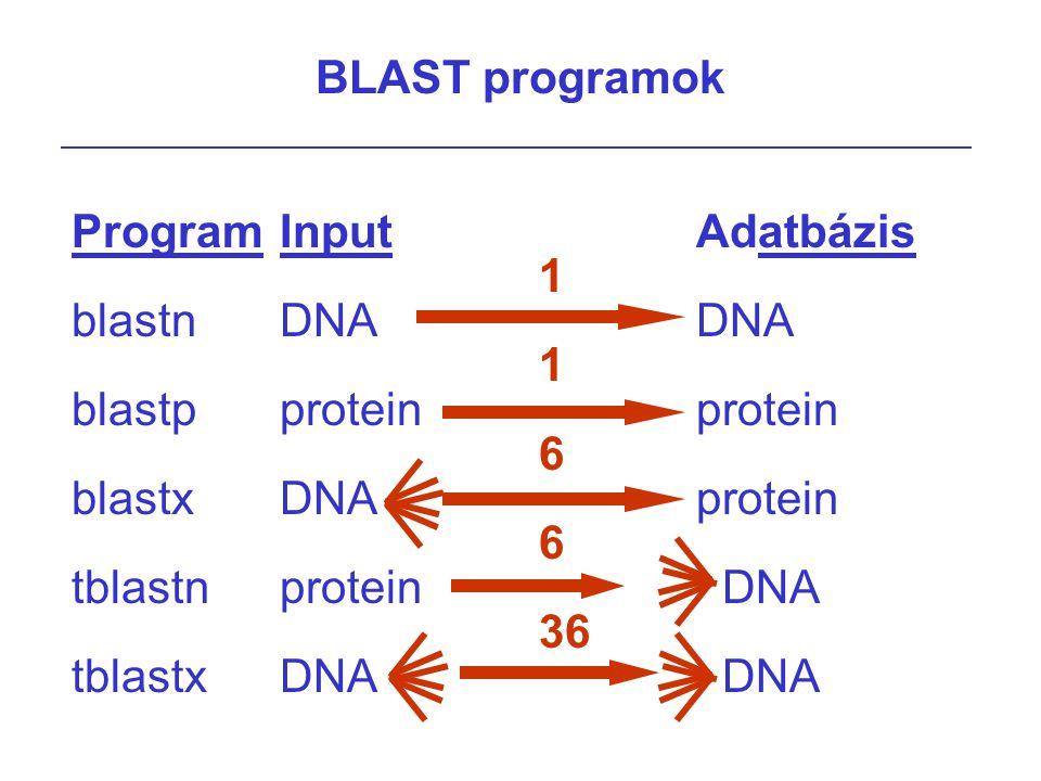 BLAST variációk MEGABLAST: –Nagyon hasonló szekvenciák összahasonlítására van optimalizálva Legjobban működik, ha k = 4i  16 Lineáris lyuk szankció PSI-BLAST: –BLAST-tal sok találat –ezeket illesztjük, és mintázatot (pattern) kreálunk –ezt a mintázatot használjuk a következő kereséshez ezeket a lépéseket iteratíve ismételjük WU-BLAST: (Wash U BLAST) –Optimilizált, extra tulajdonságok BlastZ –BLAST/PatternHunter metódus kombinációja