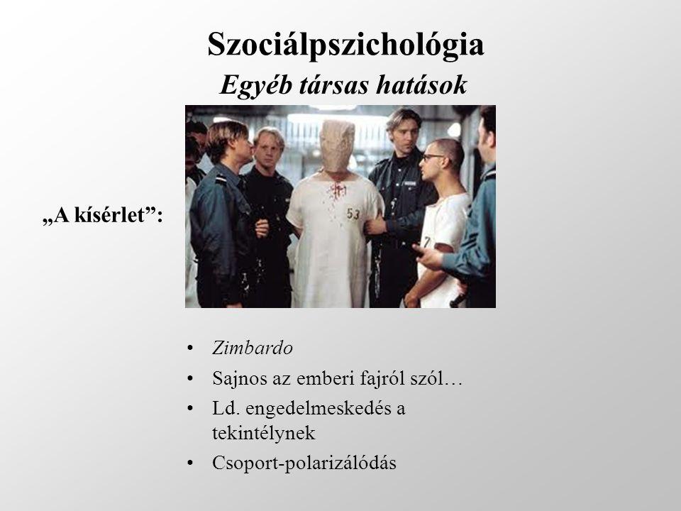 """Szociálpszichológia Egyéb társas hatások """"A kísérlet"""": Zimbardo Sajnos az emberi fajról szól… Ld. engedelmeskedés a tekintélynek Csoport-polarizálódás"""