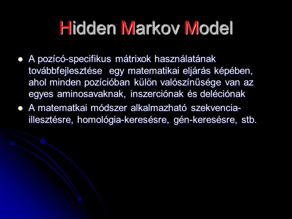 Hidden Markov Model A pozícó-specifikus mátrixok használatának továbbfejlesztése egy matematikai eljárás képében, ahol minden pozícióban külön valószínűsége van az egyes aminosavaknak, inszerciónak és deléciónak A pozícó-specifikus mátrixok használatának továbbfejlesztése egy matematikai eljárás képében, ahol minden pozícióban külön valószínűsége van az egyes aminosavaknak, inszerciónak és deléciónak A matematkai módszer alkalmazható szekvencia- illesztésre, homológia-keresésre, gén-keresésre, stb.