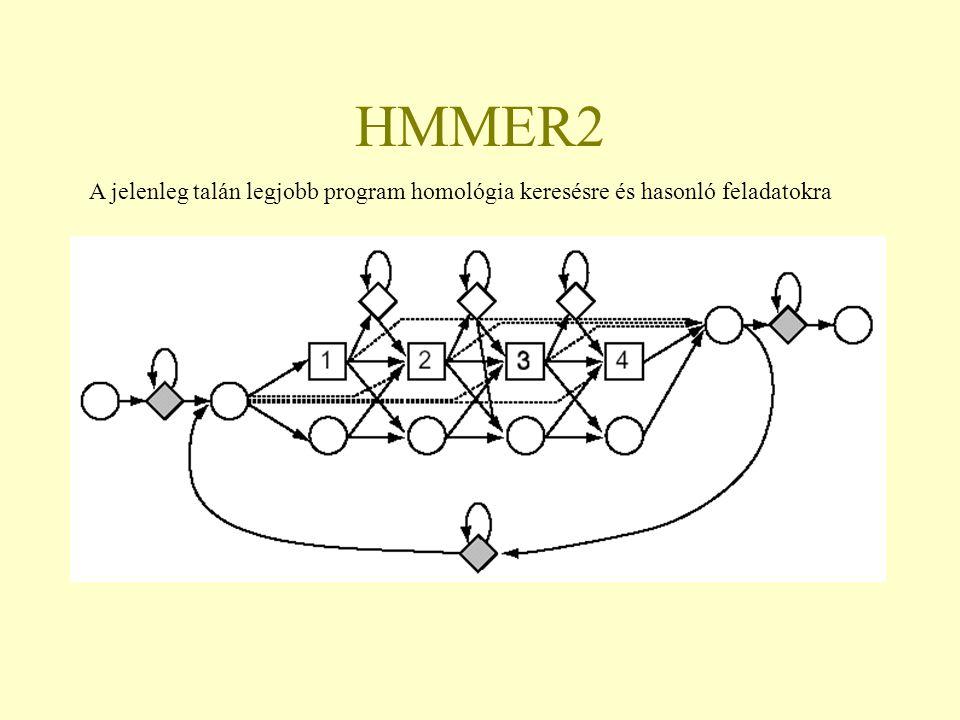 HMMER2 A jelenleg talán legjobb program homológia keresésre és hasonló feladatokra