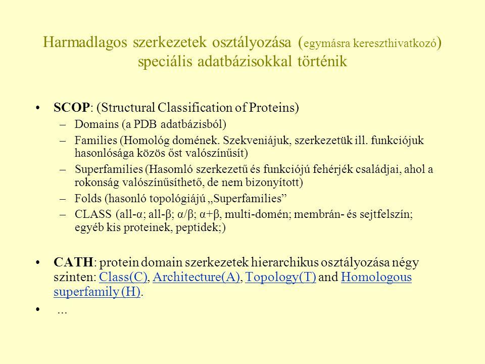 Harmadlagos szerkezetek osztályozása ( egymásra kereszthivatkozó ) speciális adatbázisokkal történik SCOP: (Structural Classification of Proteins) –Domains (a PDB adatbázisból) –Families (Homológ domének.