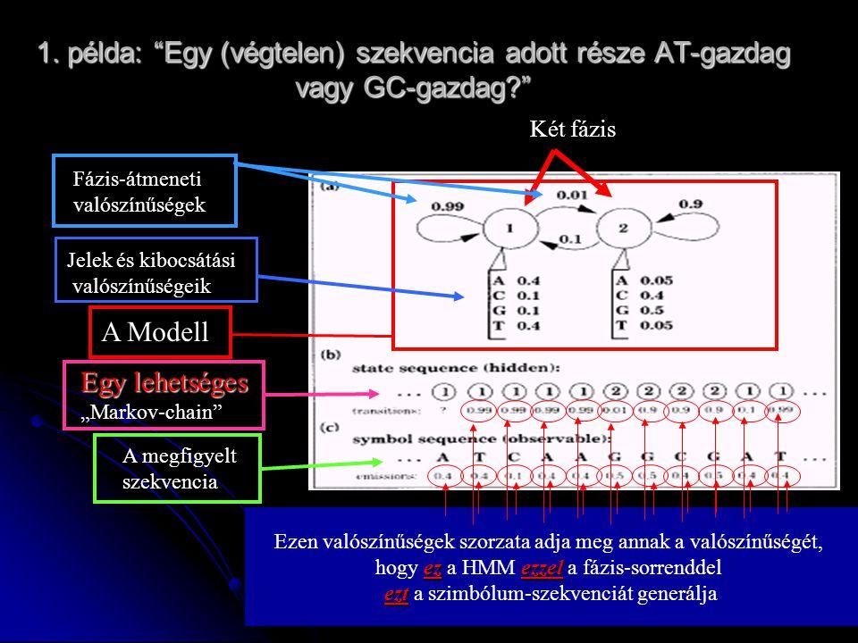 """1. példa: """"Egy (végtelen) szekvencia adott része AT-gazdag vagy GC-gazdag?"""" Két fázis A Modell Jelek és kibocsátási valószínűségeik Fázis-átmeneti val"""