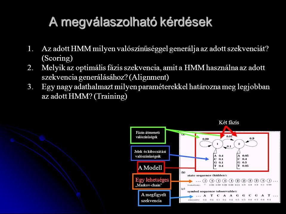 """Két fázis Fázis-átmeneti valószínűségek Jelek és kibocsátási valószínűségeik Egy lehetséges Egy lehetséges """"Markov-chain A Modell A megfigyelt szekvencia A megválaszolható kérdések 1.Az adott HMM milyen valószínűséggel generálja az adott szekvenciát."""
