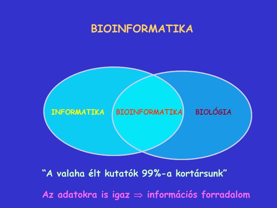 INFORMATIKA - információk megfejtése  új információk produkálása - adatok feldolgozása, csoportosítása, megjelenítése - adatok harmonizálása Adatbevitel, adatrendezés  adatbankok Adatbankok: - adatok gyors cseréje - interaktív kapcsolat az adatbankok és a kutatók között Adatfeldolgozás, adatmegjelenítés, kiértékelés  újabb információk  újabb adatbankok automatizálás, speciális szoftverek speciális szaktudás