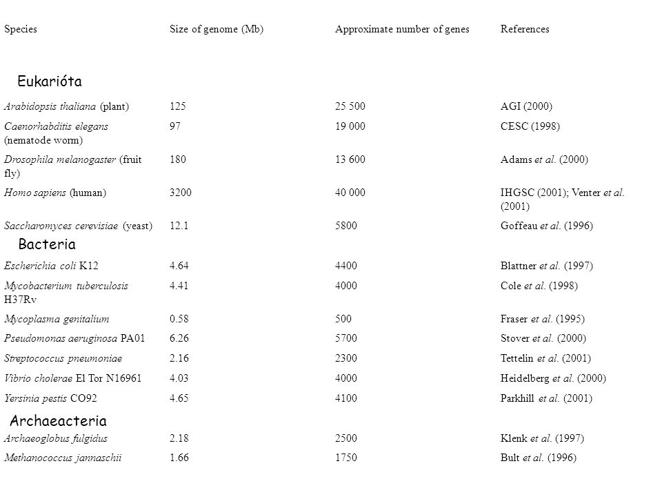 SpeciesSize of genome (Mb)Approximate number of genesReferences Eukaryotes Arabidopsis thaliana (plant)12525 500AGI (2000) Caenorhabditis elegans (nem