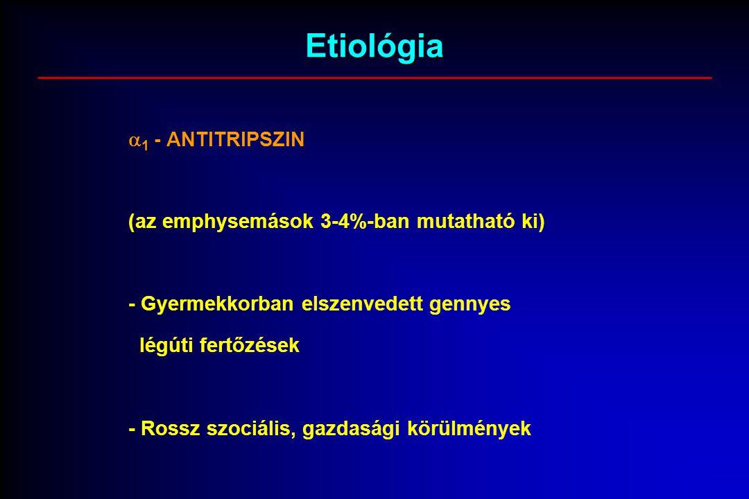 Etiológia  1 - ANTITRIPSZIN (az emphysemások 3-4%-ban mutatható ki) - Gyermekkorban elszenvedett gennyes légúti fertőzések - Rossz szociális, gazdasági körülmények