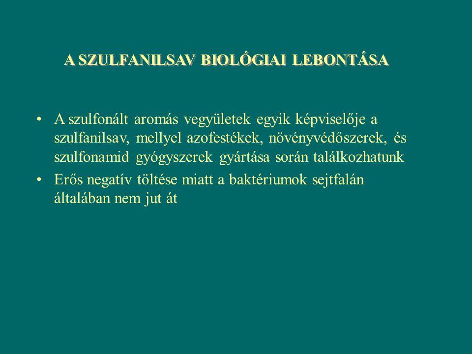 A SZULFANILSAV BIOLÓGIAI LEBONTÁSA A szulfonált aromás vegyületek egyik képviselője a szulfanilsav, mellyel azofestékek, növényvédőszerek, és szulfona