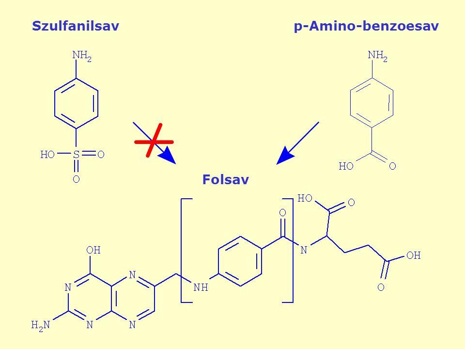 Folsav Szulfanilsavp-Amino-benzoesav