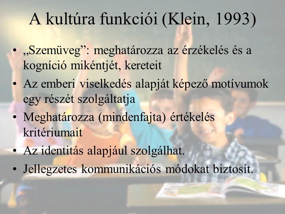 """A kultúra funkciói (Klein, 1993) """"Szemüveg"""": meghatározza az érzékelés és a kogníció mikéntjét, kereteit Az emberi viselkedés alapját képező motívumok"""