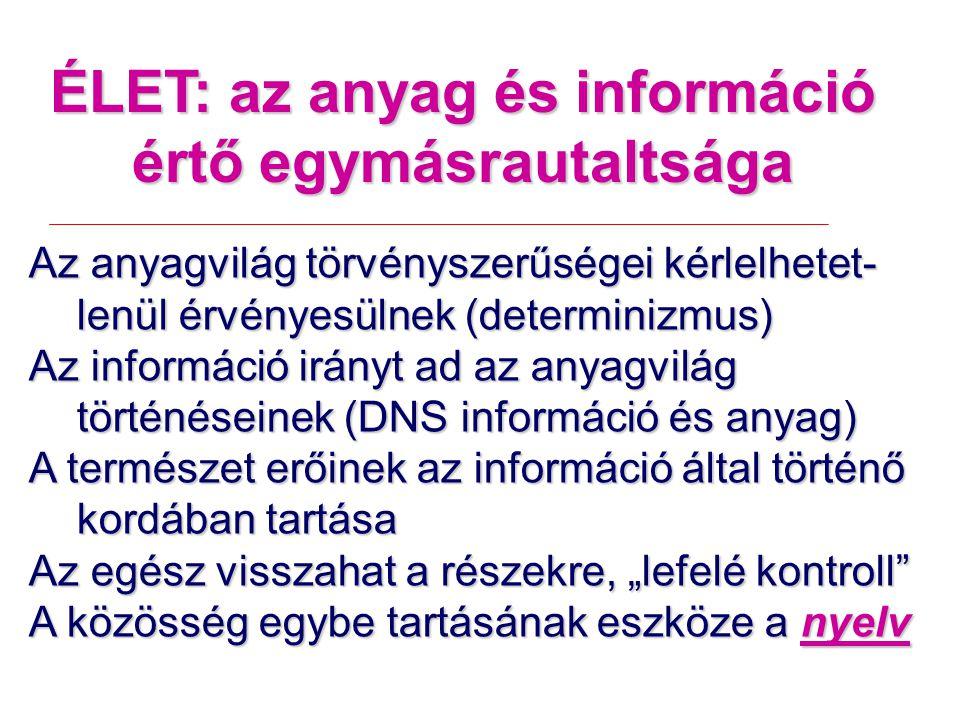"""ÉLET: az anyag és információ értő egymásrautaltsága Az anyagvilág törvényszerűségei kérlelhetet- lenül érvényesülnek (determinizmus) Az információ irányt ad az anyagvilág történéseinek (DNS információ és anyag) A természet erőinek az információ által történő kordában tartása Az egész visszahat a részekre, """"lefelé kontroll A közösség egybe tartásának eszköze a nyelv"""