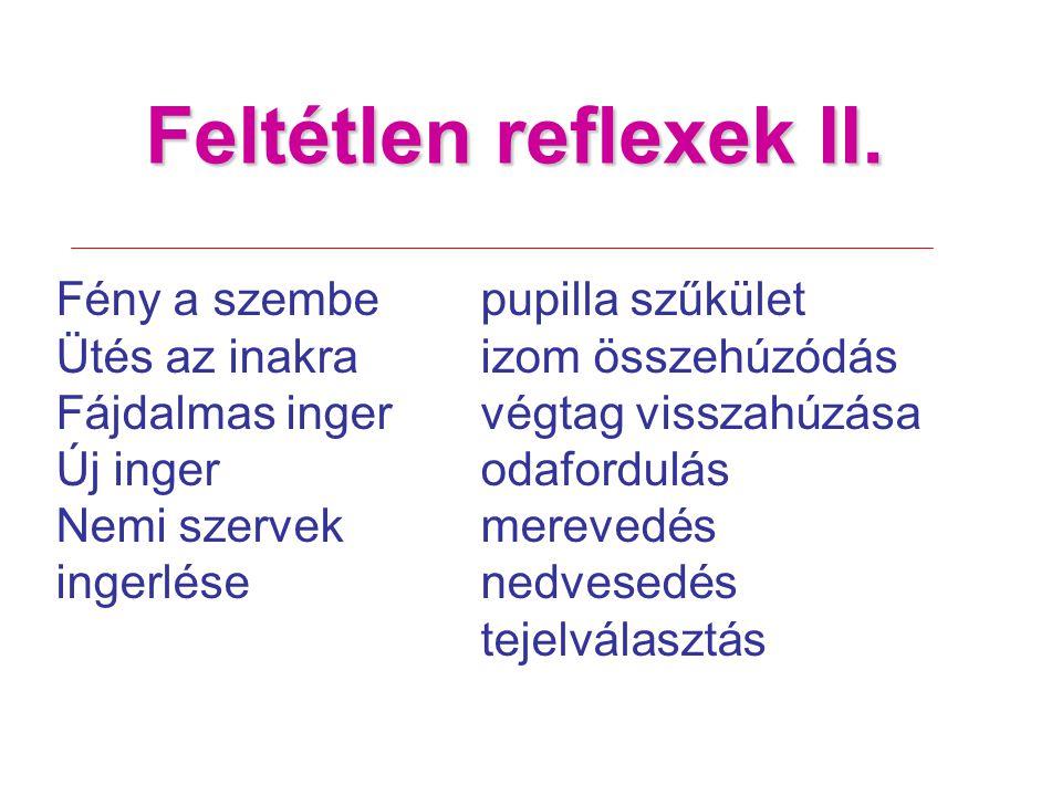 Feltétlen reflexek II.