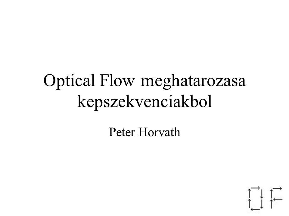 Optical Flow meghatarozasa kepszekvenciakbol Peter Horvath