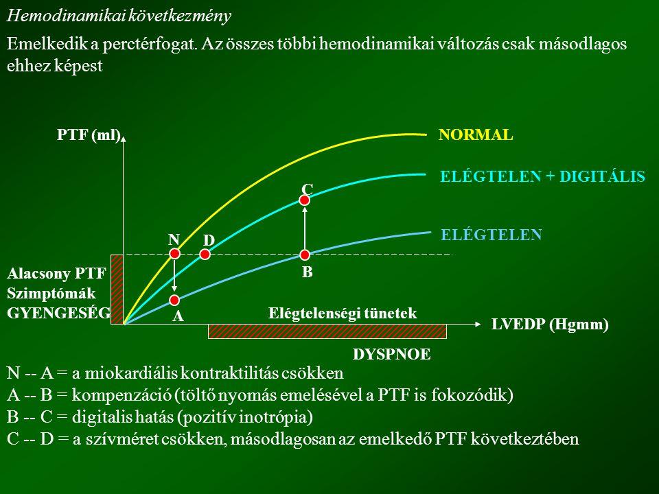 2.) Negatív chronotróp hatás (bradycardia) a.) Indirekt, vagy vagus hatás (paraszimpatomimetikus hatás) domináns hatás (atropinnal blokkolható) b.) Direkt hatás a.) Indirekt vagus hatás bradycardia (negatív chronotróp) pitvari refrakter periódus rövidül (flutter  fibrilláció) A-V refrakteriás nő (negatív dromotróp hatás) (kamravédelem) b.) Direkt hatás sinus frekvencia lassul  bradycardia pitvari refrakter periódus nő (nem domináns) kamrai refrakteritás csökken A-V átvezetés nő (A-V refrakteritás fokozódik) 3.) Negatív dromotróp hatása (ingervezetés lassul).