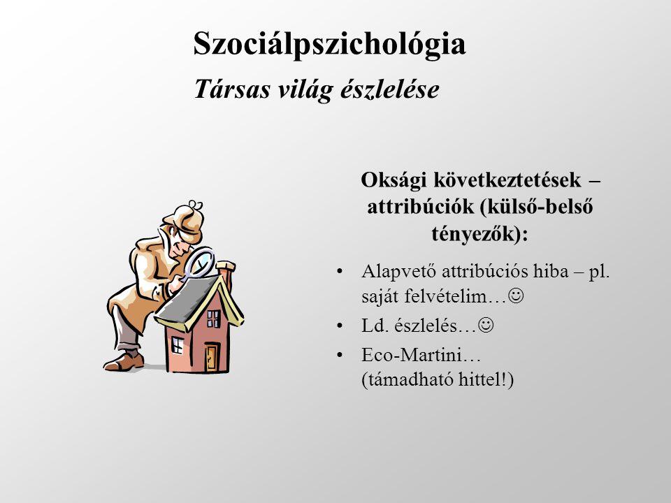 Szociálpszichológia Társas világ észlelése Oksági következtetések – attribúciók (külső-belső tényezők): Alapvető attribúciós hiba – pl. saját felvétel