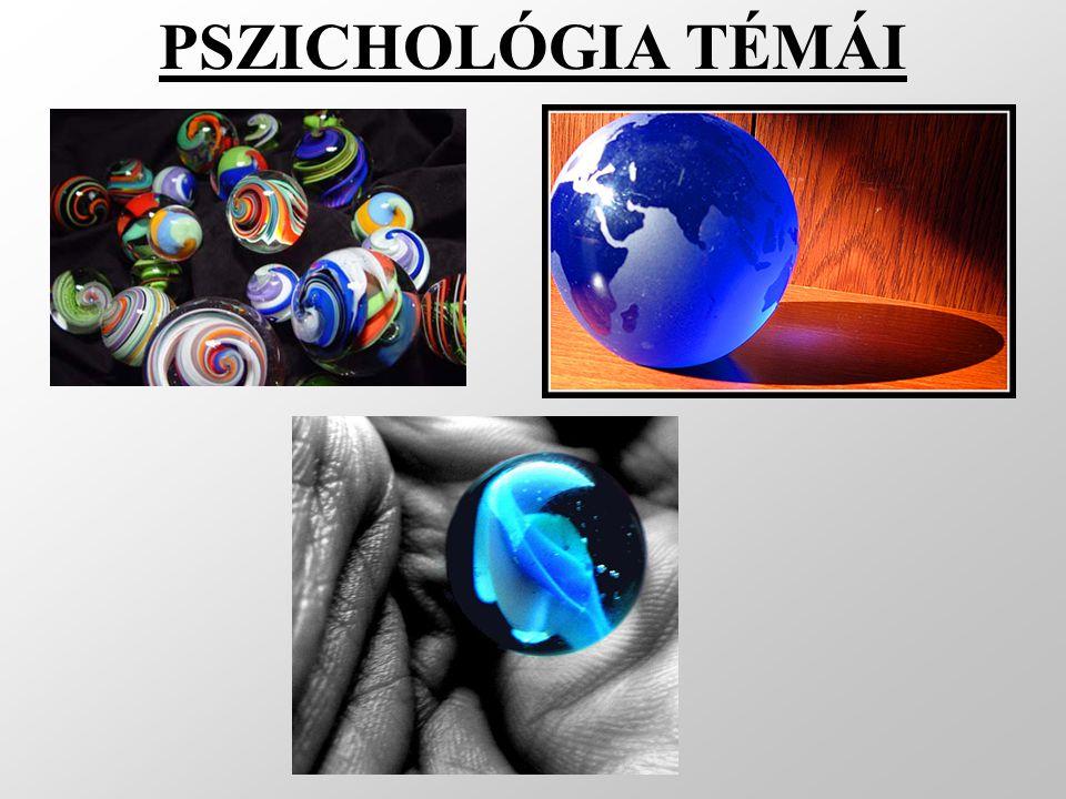 Általános pszichológia Érzékelés Észlelés Figyelem Emlékezés Tanulás Képzelet Gondolkodás