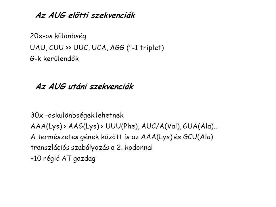 Az AUG előtti szekvenciák 20x-os különbség UAU, CUU >> UUC, UCA, AGG ( -1 triplet) G-k kerülendők Az AUG utáni szekvenciák 30x -oskülönbségek lehetnek AAA(Lys) > AAG(Lys) > UUU(Phe), AUC/A(Val), GUA(Ala)...