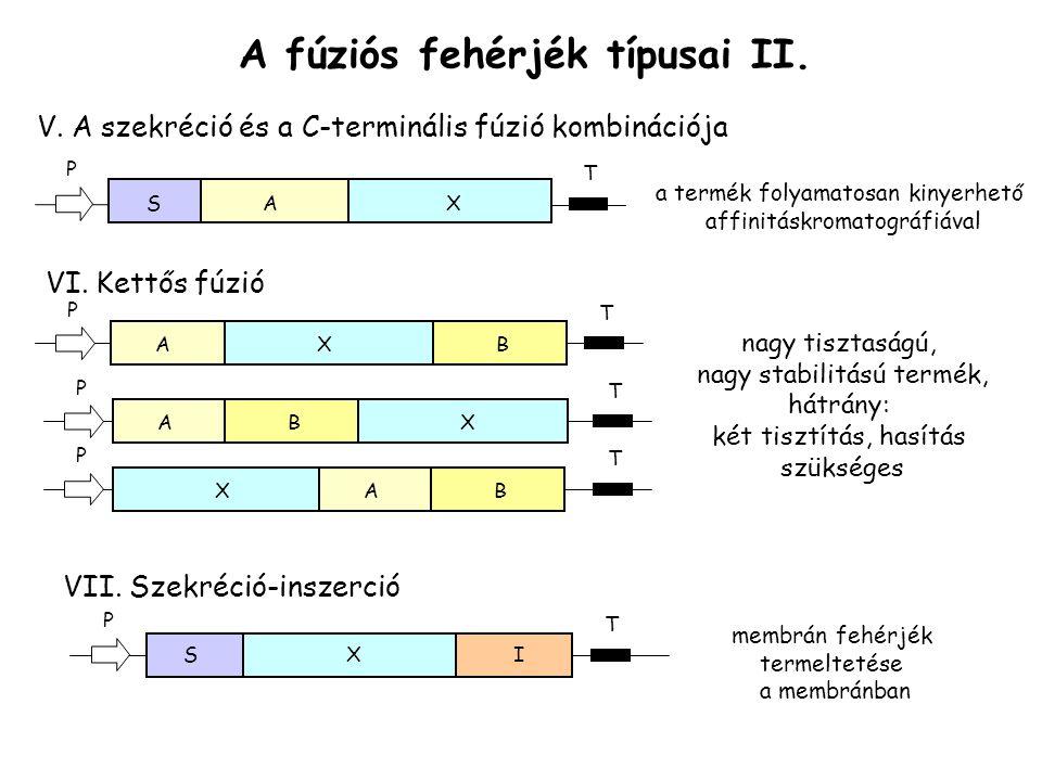 A fúziós fehérjék típusai II.V.