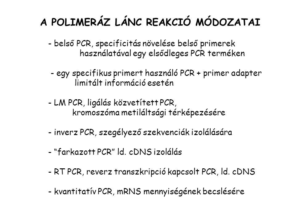 A POLIMERÁZ LÁNC REAKCIÓ MÓDOZATAI - belső PCR, specificitás növelése belső primerek használatával egy elsődleges PCR terméken - egy specifikus primert használó PCR + primer adapter limitált információ esetén - LM PCR, ligálás közvetített PCR, kromoszóma metiláltsági térképezésére - inverz PCR, szegélyező szekvenciák izolálására - farkazott PCR ld.