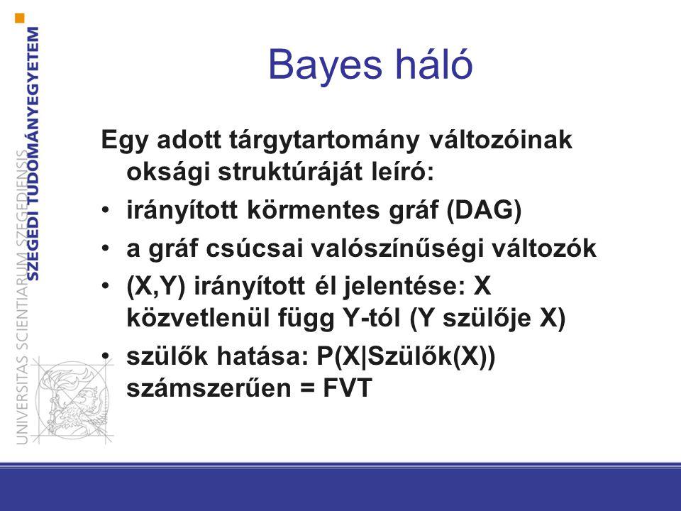 Bayes háló Egy adott tárgytartomány változóinak oksági struktúráját leíró: irányított körmentes gráf (DAG) a gráf csúcsai valószínűségi változók (X,Y) irányított él jelentése: X közvetlenül függ Y-tól (Y szülője X) szülők hatása: P(X|Szülők(X)) számszerűen = FVT
