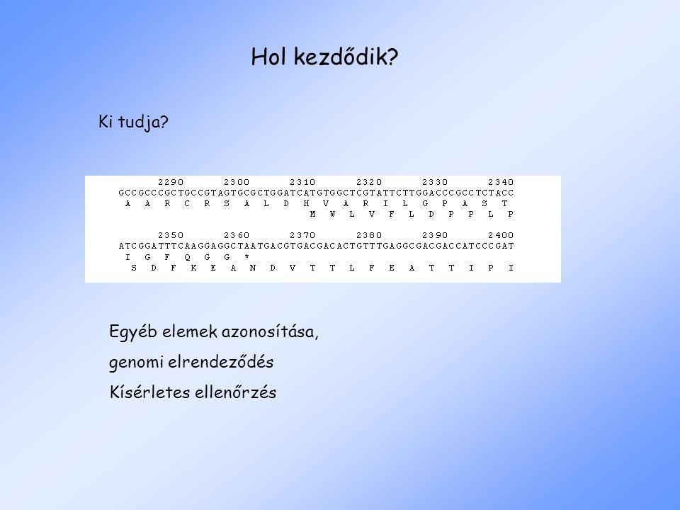 Hol kezdődik? Ki tudja? Egyéb elemek azonosítása, genomi elrendeződés Kísérletes ellenőrzés