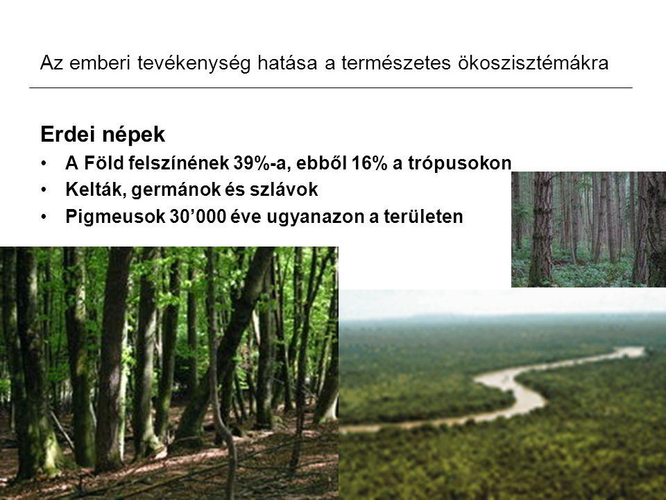 Az emberi tevékenység hatása a természetes ökoszisztémákra Erdei népek A Föld felszínének 39%-a, ebből 16% a trópusokon Kelták, germánok és szlávok Pi