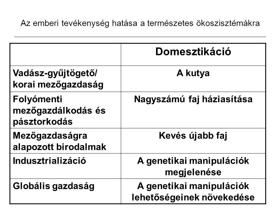 A város Differenciált társadalom -Hierarchia Az ellenőrzés formái, Norbert Elias Extra-humán Inter-humán Intra-humán