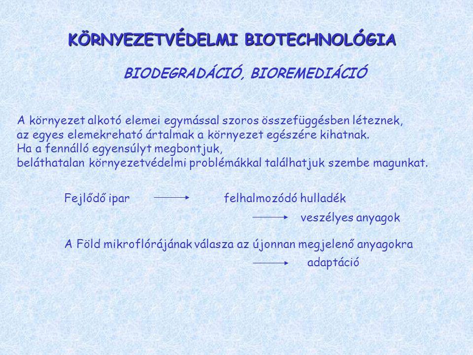 LEBONTÁSI ÚTVONAL LEHET AEROB, ANAEROB aerob: mono- és dioxigenázok anaerob: reduktív dehalogenáció, oxidált vegyületek: szulfát, nitrát