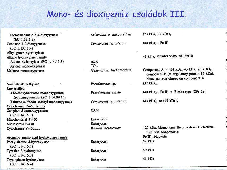 Mono- és dioxigenáz családok III.