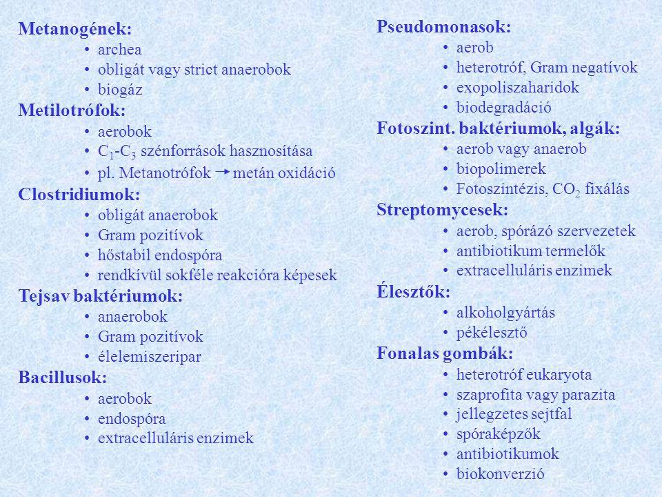 Metanogének: archea obligát vagy strict anaerobok biogáz Metilotrófok: aerobok C 1 -C 3 szénforrások hasznosítása pl.