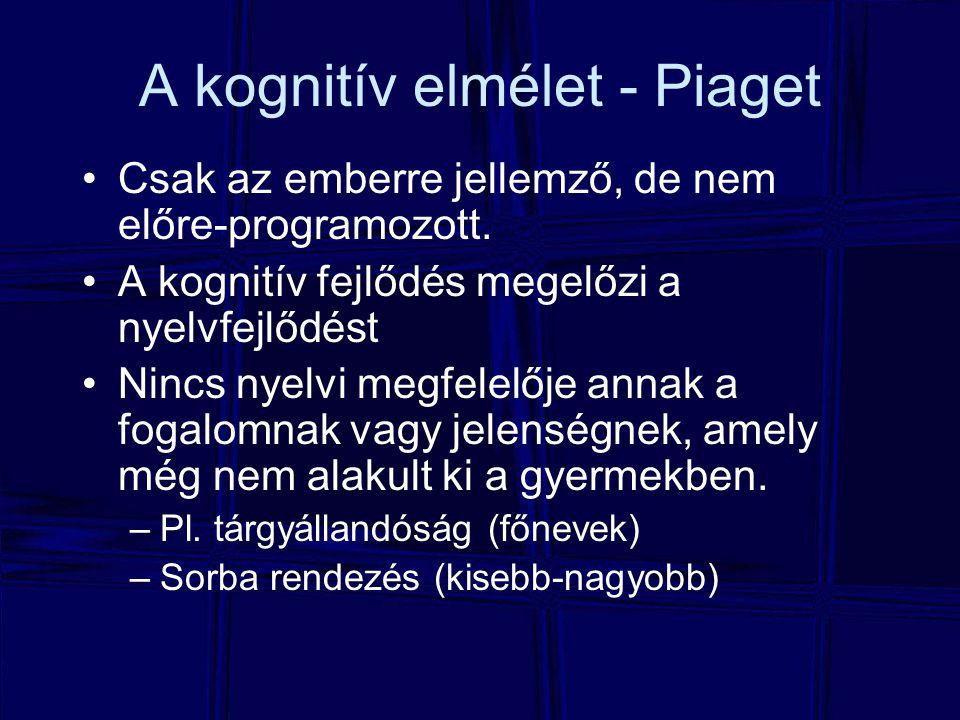 2.Nyelv elsajátítása Ki, milyen körülmények között, melyik nyelvből mennyit tud megtanulni.