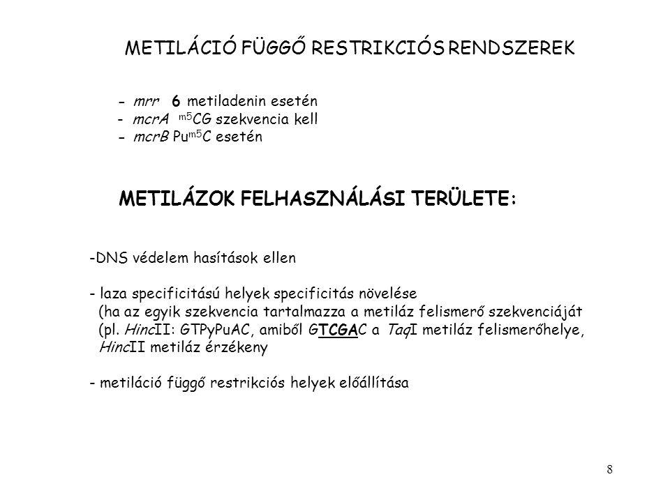 8 METILÁCIÓ FÜGGŐ RESTRIKCIÓS RENDSZEREK - mrr 6 metiladenin esetén - mcrA m5 CG szekvencia kell - mcrB Pu m5 C esetén METILÁZOK FELHASZNÁLÁSI TERÜLET