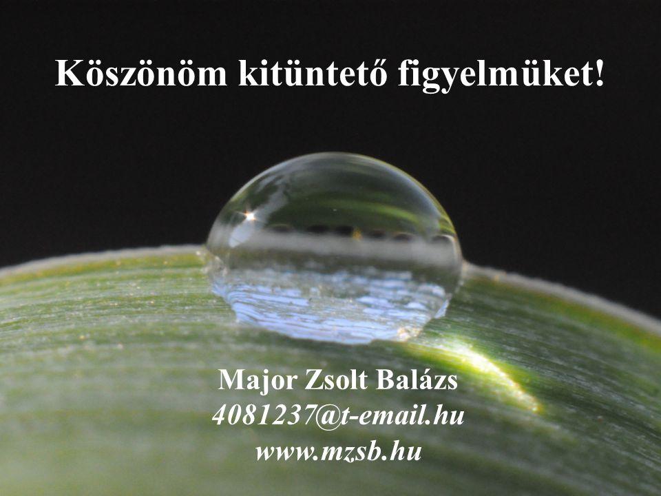 Köszönöm kitüntető figyelmüket! Major Zsolt Balázs 4081237@t-email.hu www.mzsb.hu