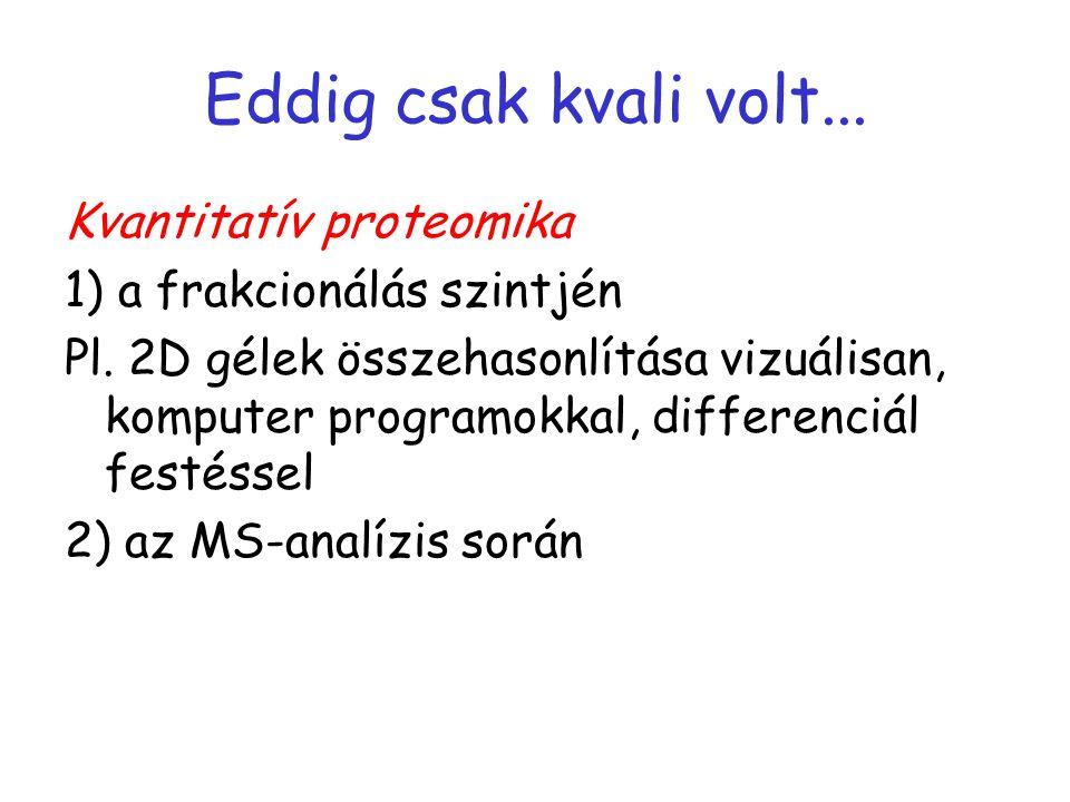 Eddig csak kvali volt... Kvantitatív proteomika 1) a frakcionálás szintjén Pl.